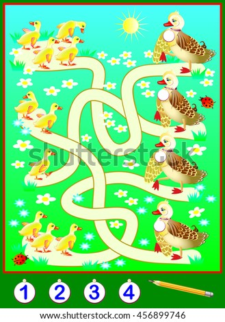 Exercises for children - need to solve examples, count the ducklings and to write the numbers in relevant circles. Vector cartoon image.