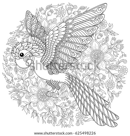 Paradise Bird Stock Images Royalty Free Images Amp Vectors