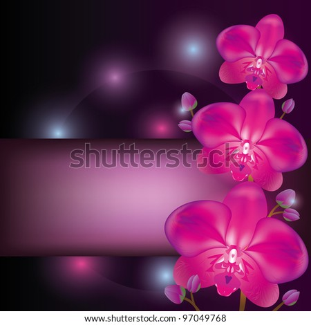Exotic flower purple orchid background, greeting or invitation card - stock vector