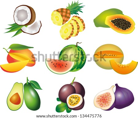 exotic fruits photo-realistic vector set - stock vector