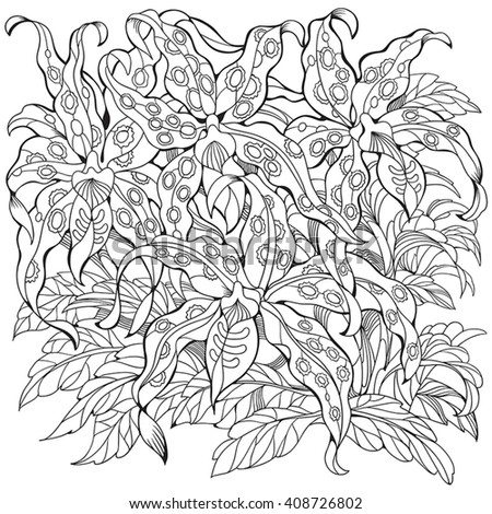 Exotic Orchids Coloring Pages With Flowers