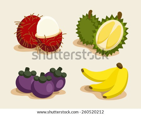 Exotic Thai Fruit : Vector Illustration