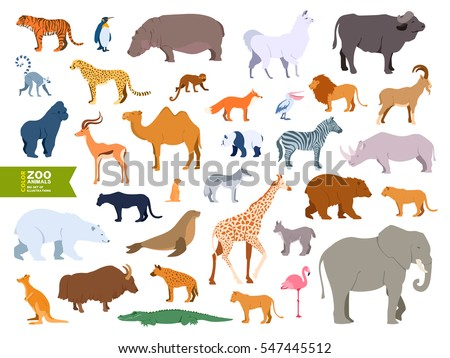 Extra big set zoo animals realistic flat cartoon design style. Lama, bull, buffalo, pelican, goat, antelope, gopher, polar bear, panther, fur seal, lemur, lynx, yak, hyena, flamingo, cheetah, walrus.