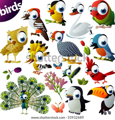 Extra Big Vector Bird Set - stock vector