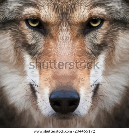 Eye contact with a severe wolf female. Menacing expression of the european wolf, very beautiful animal and dangerous beast. Amazing vector image in oil painting style. Awful charm of the wild beauty. - stock vector