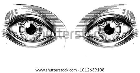 Line Drawing Eye : Eye line drawing vector illustration stock hd royalty free