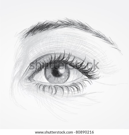 EYE / Realistic sketch of beautiful woman eye - stock vector