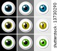 Eyeballs human and animal - vector - stock photo