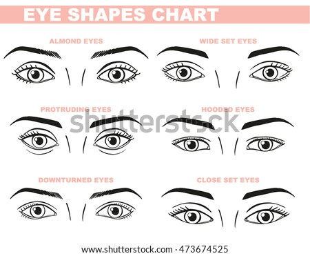 Eyes Face Chart Blank Template Makeup Stock Vector 473674525