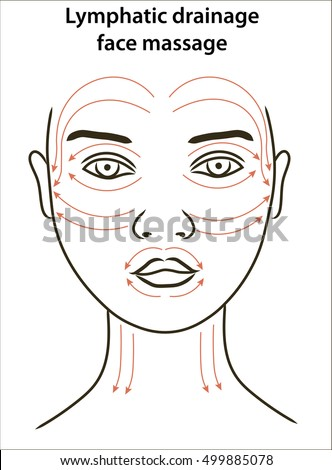 Facial Wrinkles Organ Flow
