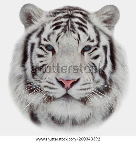 Face of a white bengal tiger, isolated on white background. Mask of the biggest cat. Wild beauty of the most dangerous and mighty beast of the world. Amazing vector image in oil painting style.  - stock vector
