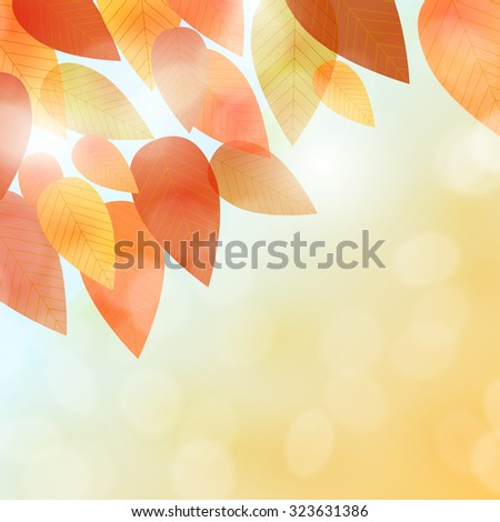 Fall leaves background - stock vector