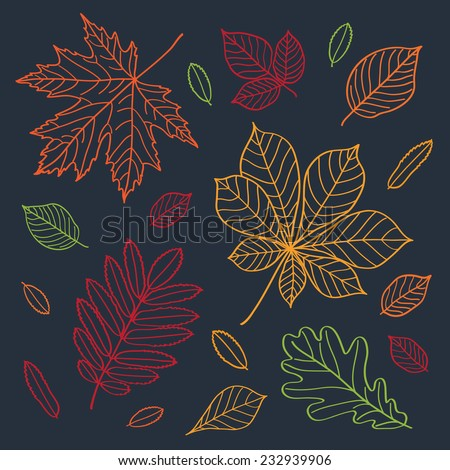 Fall of the leaves. Autumn leaves draw the outline of crayons on a blackboard. Sketch, design elements. Doodles. Vector illustration. - stock vector