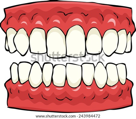 False teeth on a white background vector illustration - stock vector