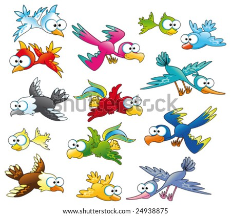 Family of birds.  Funny cartoon and vector characters - stock vector