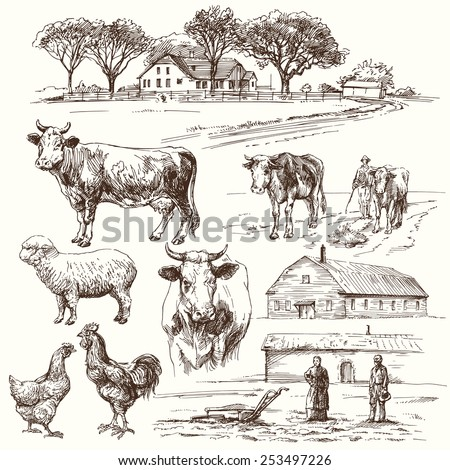 farm animals - hand drawn collection - stock vector