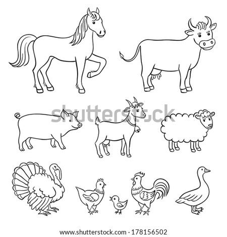 Farm animals in contours - stock vector