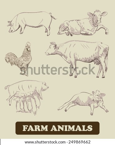 farm animals. vector sketches - stock vector