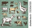 farm animals vintage set, vector - stock photo