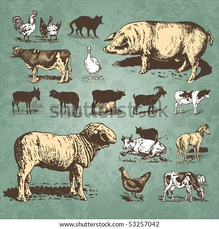 farm animals vintage set, vector - stock vector