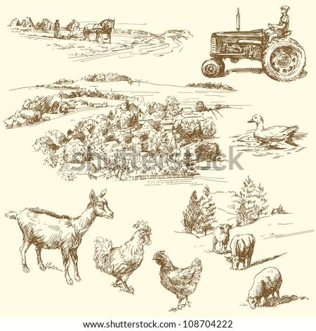 farm collection - stock vector