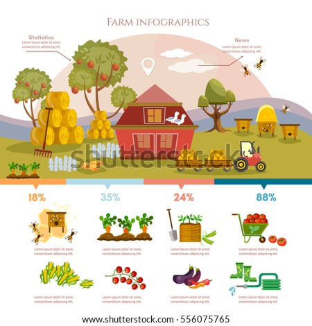 Farm Infographics Template Design Agricultural Objects Stock Vector ...