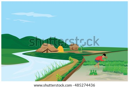 Farmers withdrew into seedlings for planting vector design