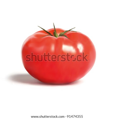 Farmhouse Tomato Illustration - stock vector