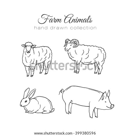 Farming illustration. Vector farm elements. Hand drawn farm animals. Hand sketched pig, rabbit and lamb. Farm animals farm pig farming elements  farm lamb, sheep vector illustration. - stock vector
