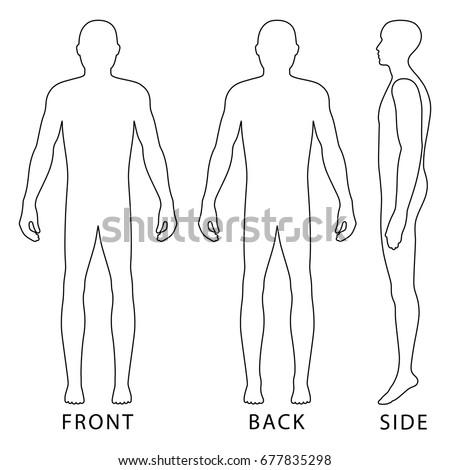 fashion body full length bald template  u0e40 u0e27 u0e01 u0e40 u0e15 u0e2d u0e23 u0e4c u0e2a u0e15 u0e47 u0e2d u0e01