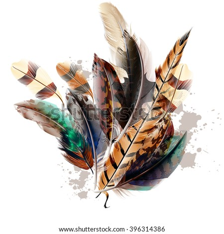 Fashion vector  background with colorful feathers - stock vector