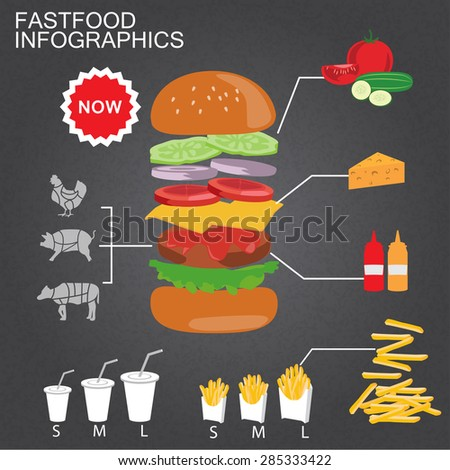 fastfood burger infographics background and elements. french fries, drinking water. Can be used for recipe background, advertising shop, layout, banner, web design, brochure. Vector illustration - stock vector