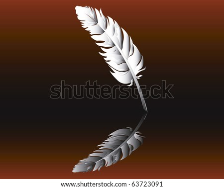 Feather against a dark background