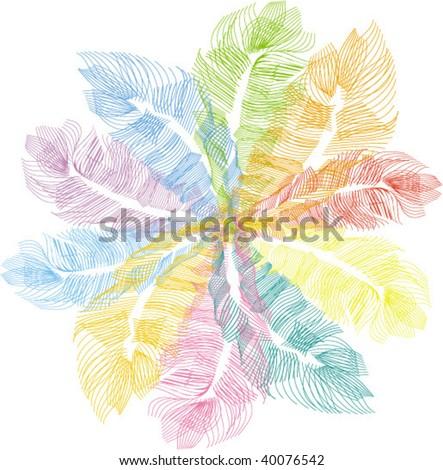 feather decor - stock vector