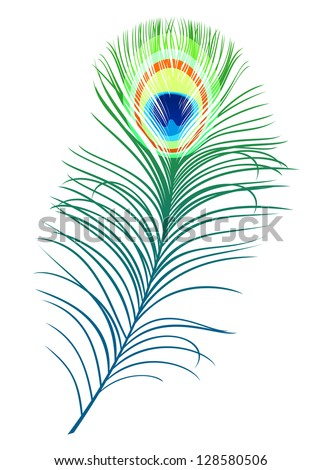 Feather of peacock bird isolated on white background. Jpeg version also available in gallery - stock vector