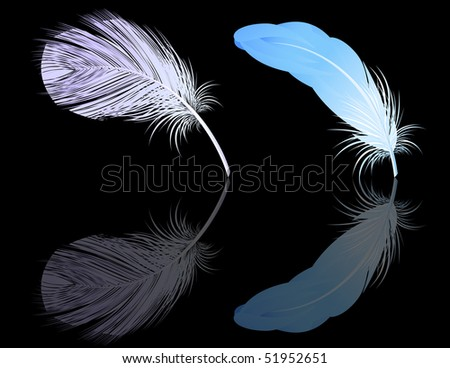 Feather reflection, vector illustration - stock vector