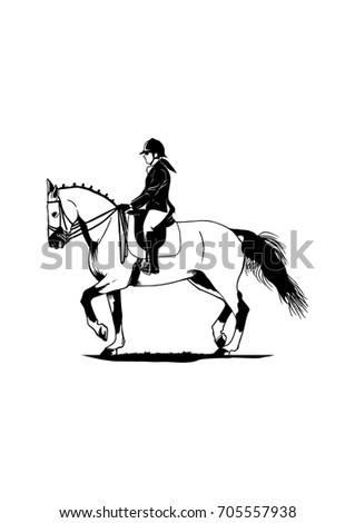female equestrian horse riding stock vector royalty free 705557938