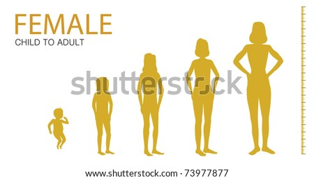 female time lapse child to adult - stock vector