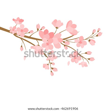 Festive illustrations. Branch of Japanese cherry blossoms with beautiful flowers.Sakura on a white background
