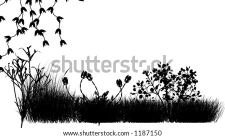 Field Grass and Flowers vector - stock vector