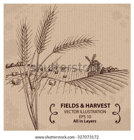 Fields with Harvest and Wheat. Hand drawn vector Illustration - stock vector