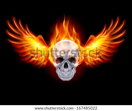 Fiery skull with fire wings on black background. - stock vector