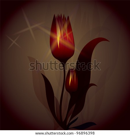 Fiery Tulip is shining / Magic background