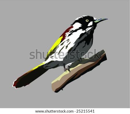 Finch on Branch Clip-Art - stock vector