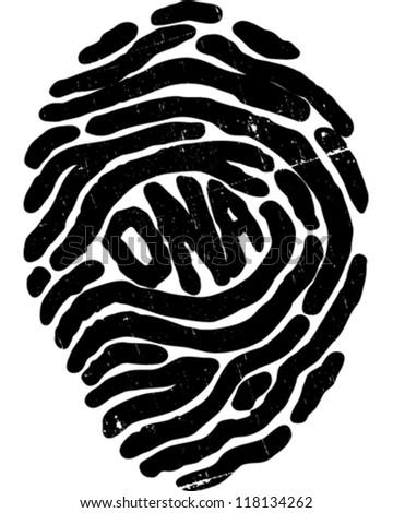 Fingerprint - stock vector