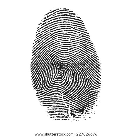 Fingerprint vector - stock vector