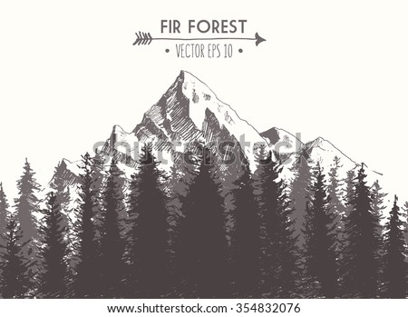 Fir forest background with contours of the mountains, hand drawn vector illustration