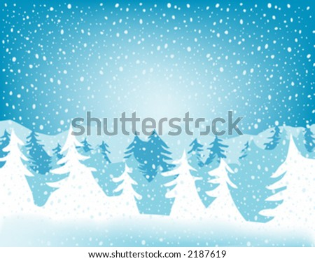 fir forest in wintertime with falling snow