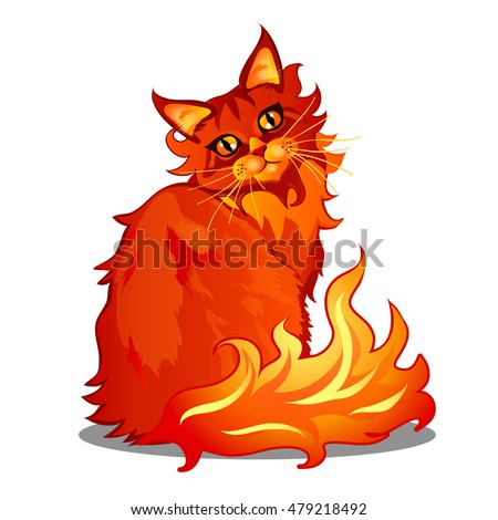 Fire Cat Stock Photos Royalty Free Images Amp Vectors
