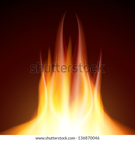 Fire flame burn on black background - stock vector
